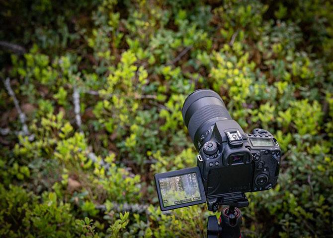 DSLR style camera